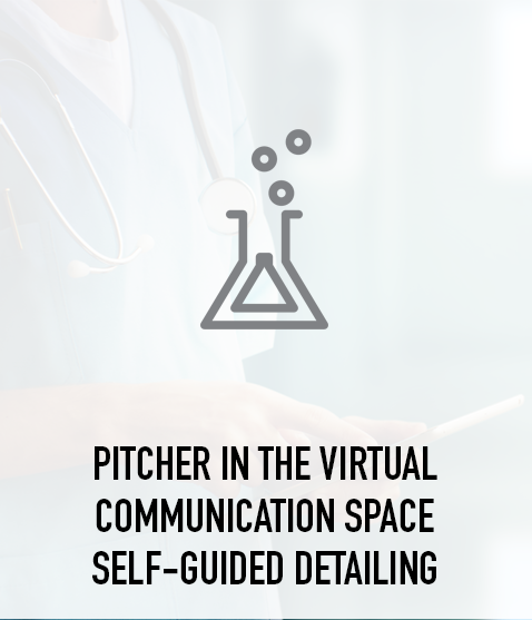 Pitcher in the Virtual Communication Space Self-Guided Detailing