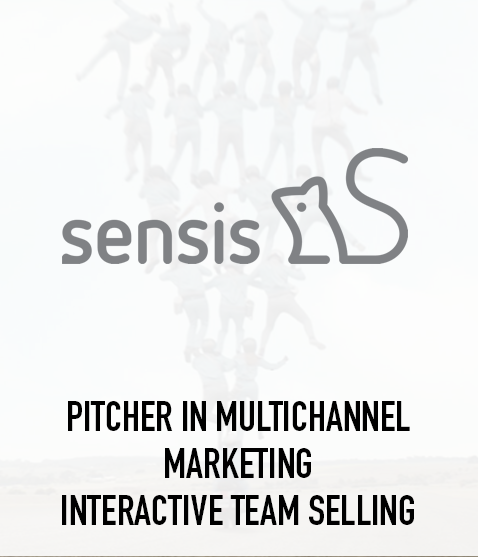 Pitcher in Multichannel Marketing Interactive Team Selling